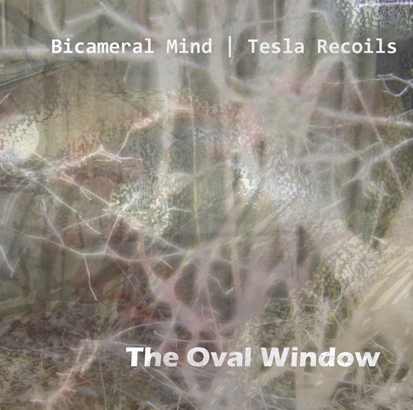 bicameral mind | tesla recoils - the oval window